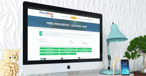 leaving cert free resources