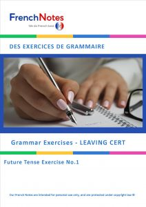 FRENCH LEAVING CERT FUTURE TENSE